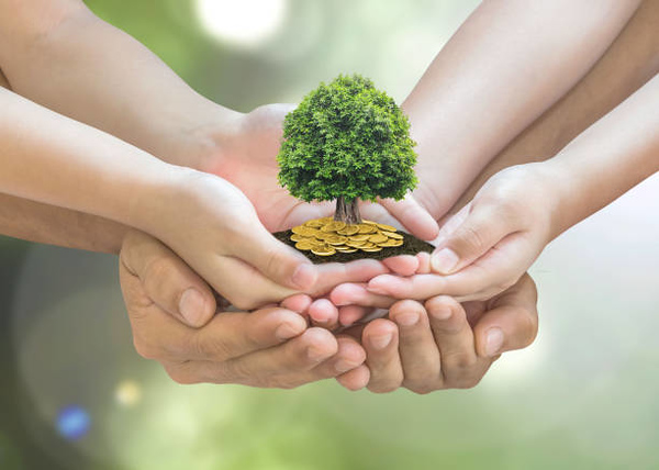 Retirement planning and family investment concept with wealthy tree growing on parent -<br /> children's hands
