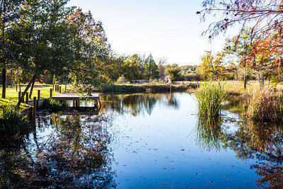 Alan's pond
