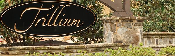 Trillium Dunwoody GA Community (1)