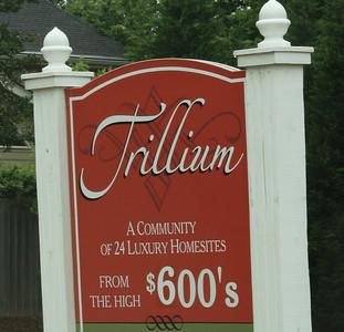 Trillium Dunwoody GA Community (6)