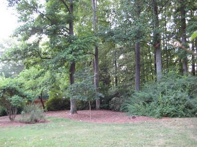 Woodland Forest Community-Sandy Springs Ga (39)