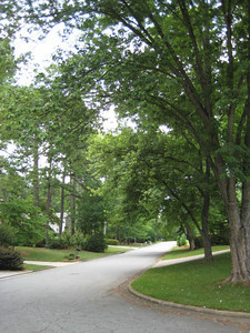 Woodland Forest Community-Sandy Springs Ga (31)