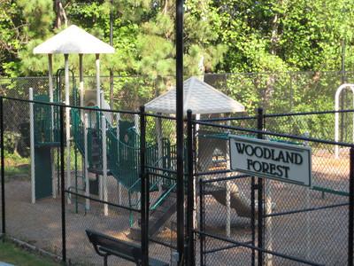 Woodland Forest Community-Sandy Springs Ga (16)