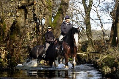 WG280213 Limited Edition. Heavy Horses, Millom.