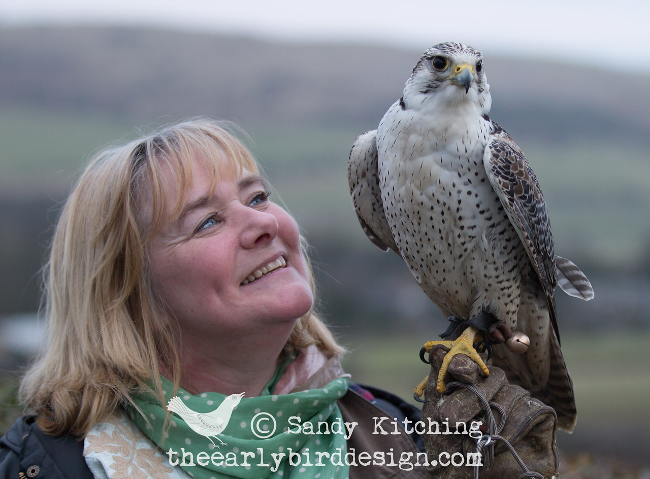 Sandy Kitching & falcon Jack Feb 2015