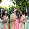 Nimrit_Vikrum_Sangeet-210