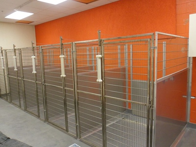 Sani Kennels with Stainless Steel
