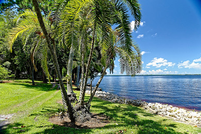 Caloosahatchee River Front -  Edison & Ford Winter Estates