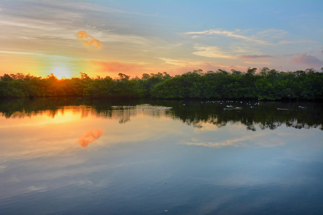 sunrise Ding Darling Sanctuary