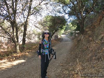 2014 (Jan 8) Gaviota Pk x7 (up main trail, down Trespass Tr)