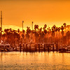 santa barbara harbor 8055-