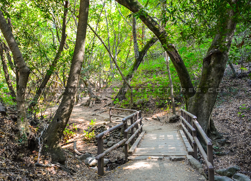 nojoqui falls stairs-5696