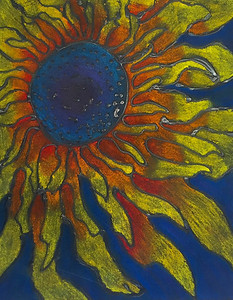 Sunflower of Fire by Claire Nowak