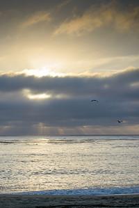 8691_d800b_Krista_Dan_S_Carmel_River_Beach_Family_Photography