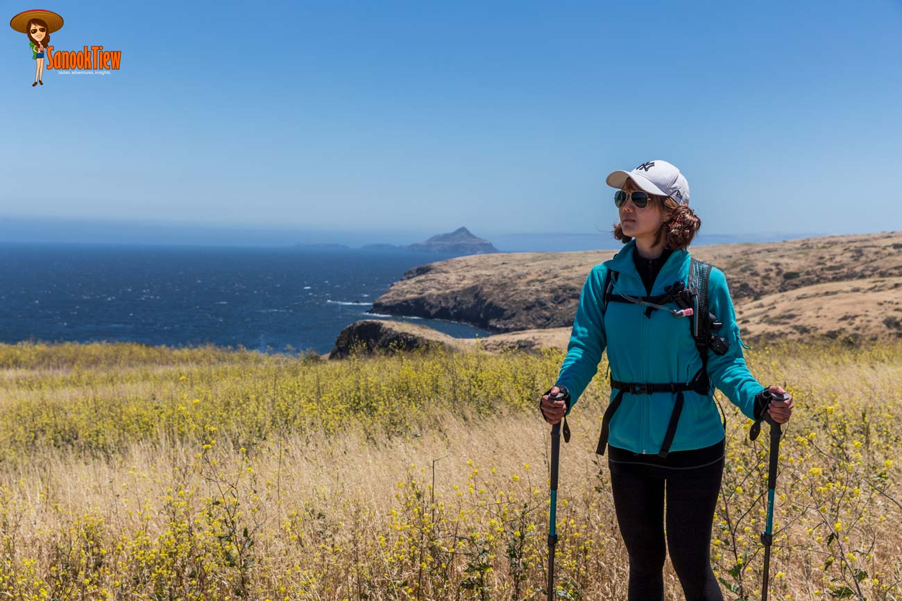 แค้มปิ้ง ไฮกิ้งใน เกาะซานตาครูซ - Santa Cruz Island, อุทยานแห่งชาติหมู่เกาะแชนเนล - Channel Islands National Park