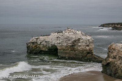 Santa Cruz MTB Trip
