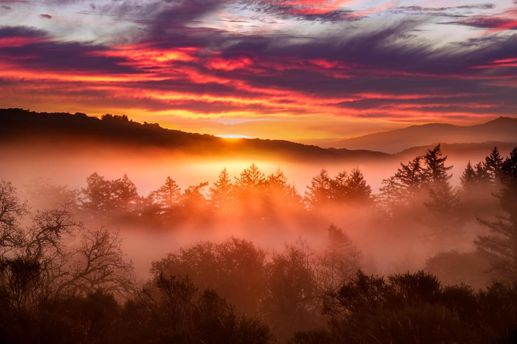 Santa Cruz Mountain Sunrise