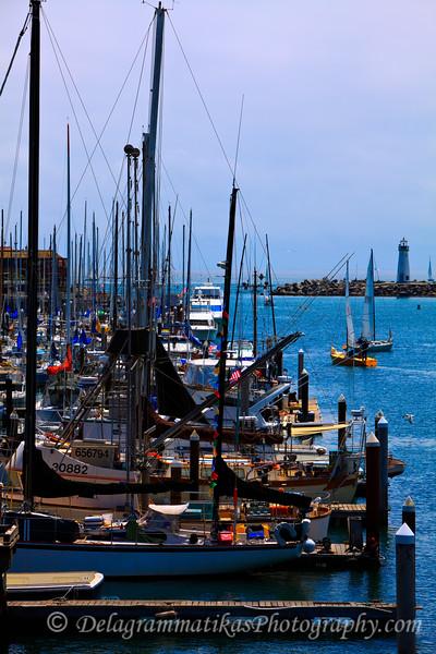 20110730_Santa Cruz_1668