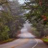 20140207_Santa Cruz_0969