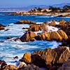 20181026_Monterey Bay_5955