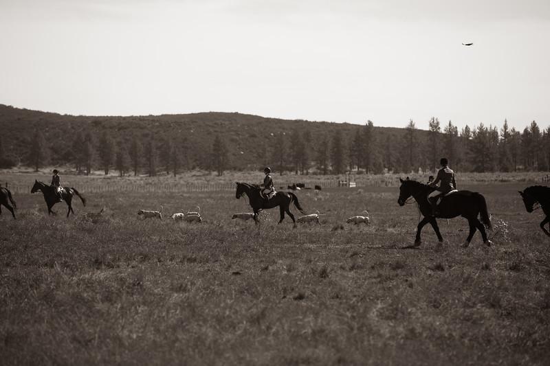 Santa Fe Hunt Club - Opening Day - 11-9-19-315.jpg