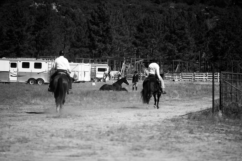 Santa Fe Hunt Club - Opening Day - 11-9-19-346.jpg