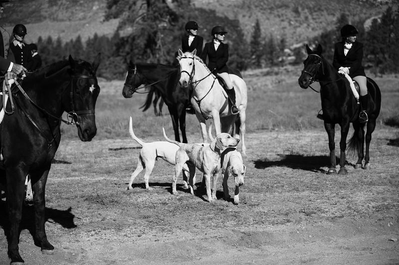 Santa Fe Hunt Club - Opening Day - 11-9-19-37.jpg