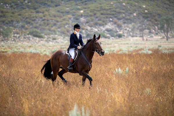 Santa Fe Hunt