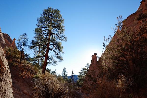 Santa Fe –November '15