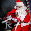 Santa pics 2015 -9