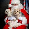 Santa pics 2015 -16