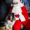 Santa pics 2015 -5