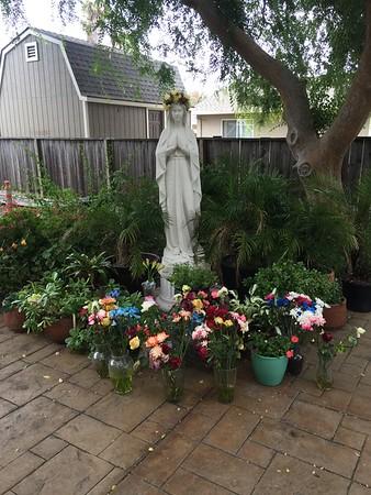 Marys garden