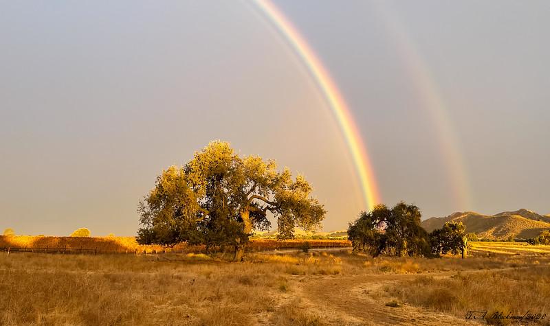 Rainbow Las Cruces Ranch