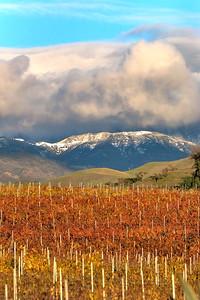 Santa Ynez Valley 15