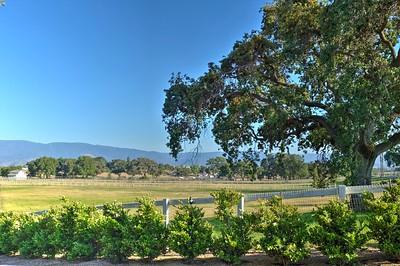 Santa Ynez Valley 2