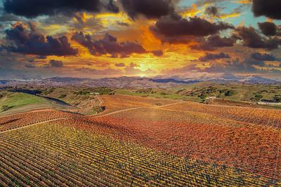 Santa Ynez Valley 12