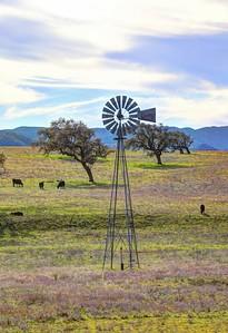 Santa Ynez Valley 24