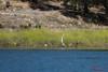 IP-IG Lake San Antonio 2011 019 IMG_1494