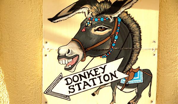 """Σαντορίνη. """"Donkey Station"""""""