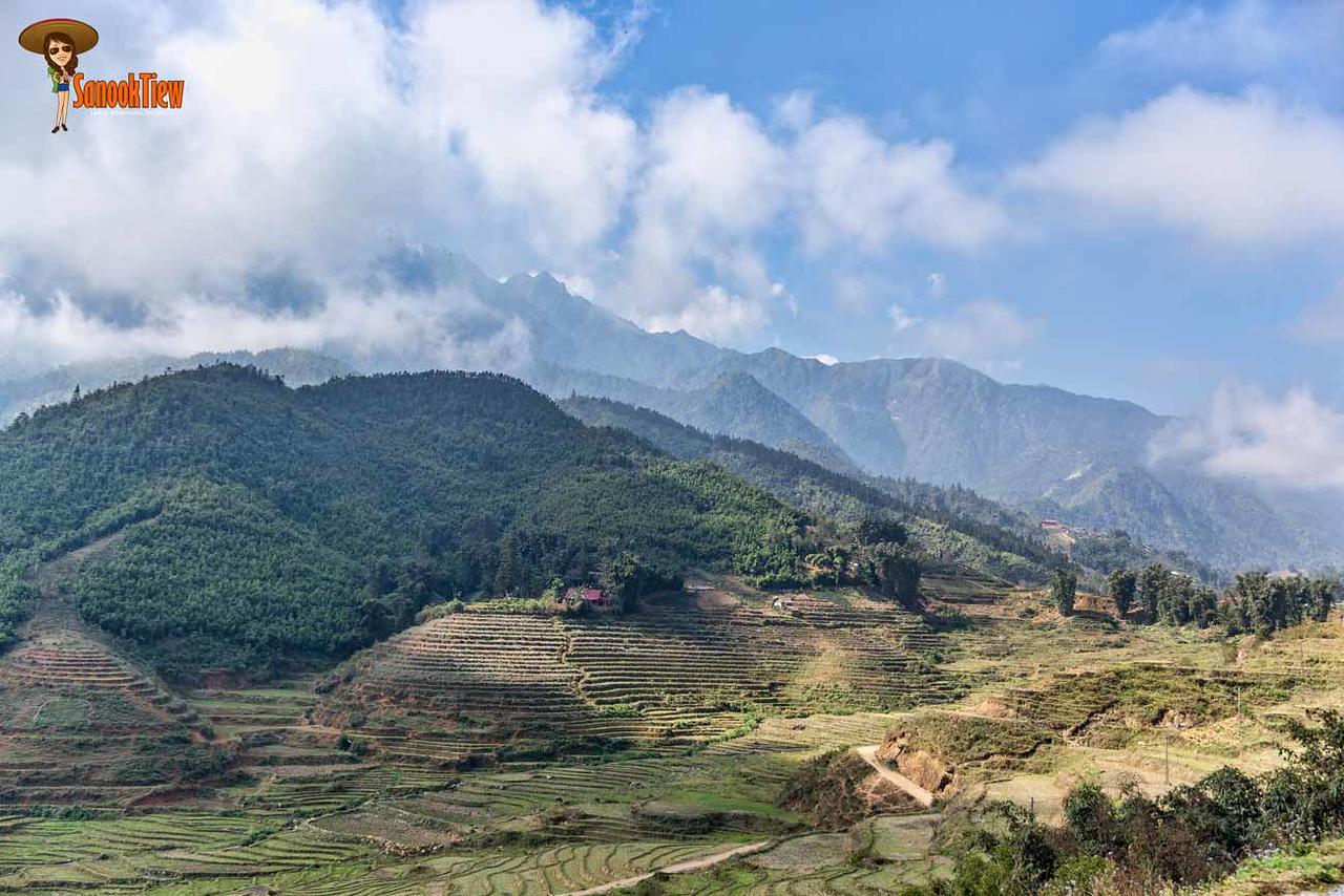 เมืองแห่งขุนเขา เมืองแห่งม่านหมอก เมืองซาปา vietnam เวียดนาม