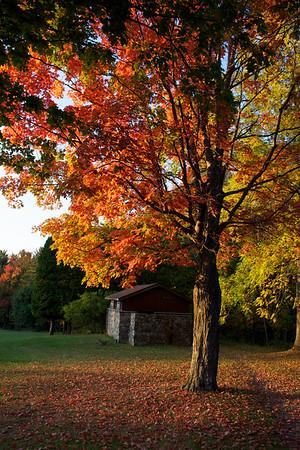 Nature photography in Buffalo, NY