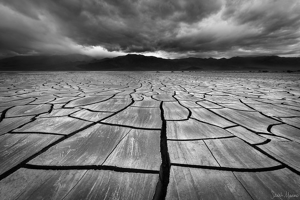 Mojave Mud Cracks