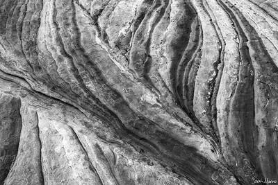 Sandstone Petals