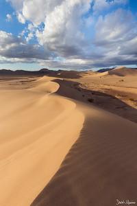 Sculpted Dunes