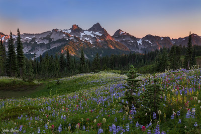 Tatoosh Range Sunset