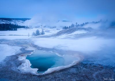 Winter's Grace
