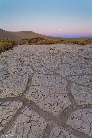 Tiles in the Dunes