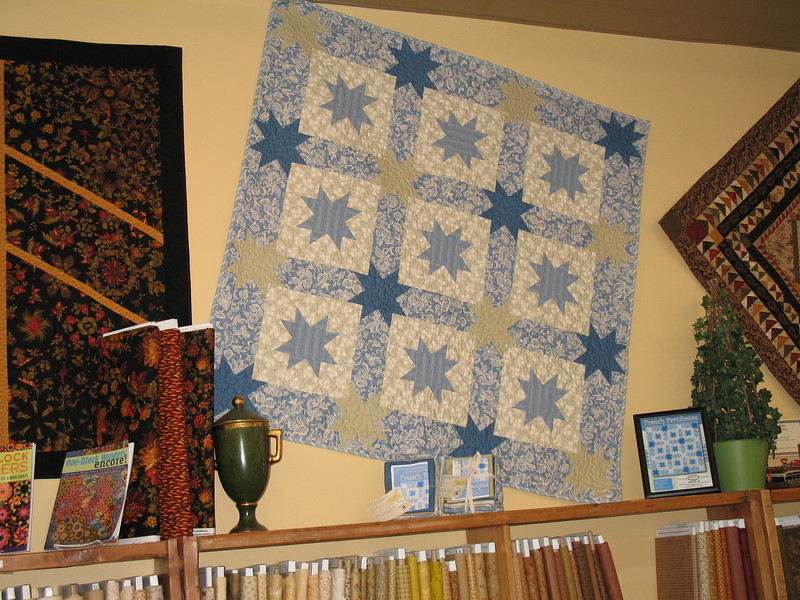 A quilt I made that displayed in a local quilt shop.