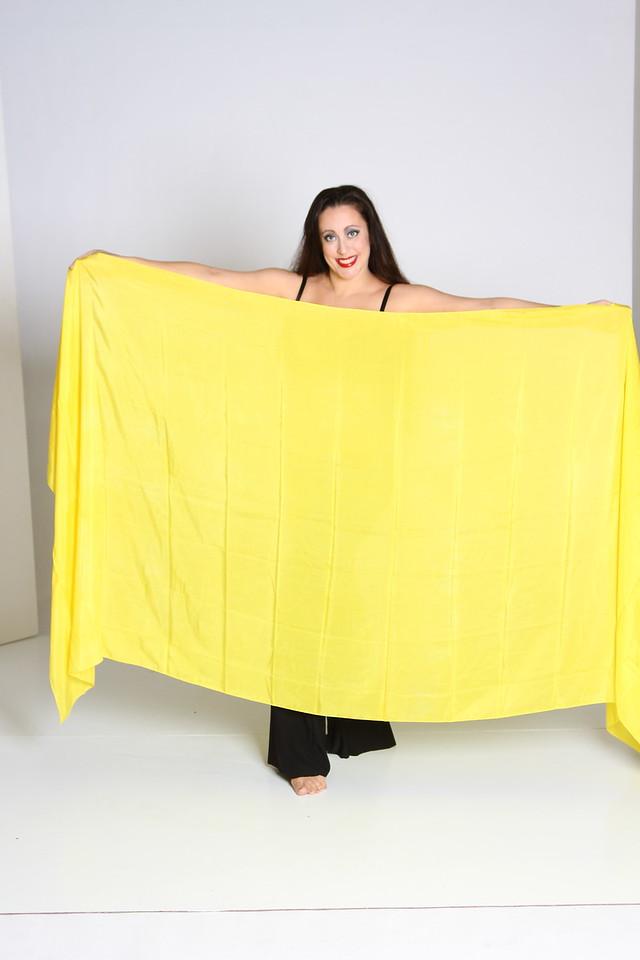 3 yard  veil $50 yellow-002